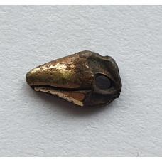 Клюв маленькой птички 4 мм